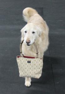 carry my purse - edited